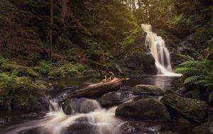 Falkauer Wasserfall, Schwarzwald