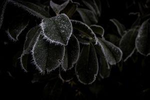 Naturfotografie by andre-bauer.com